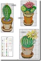 cactus punto de cruz (2)